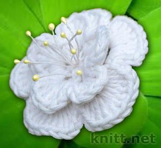 Для вязания этого цветка вам понадобится немного умения и 15 минут времени.  Этот цветок можно смело использовать для декорирования шапки или сумки , а так же можно носить как брошь.